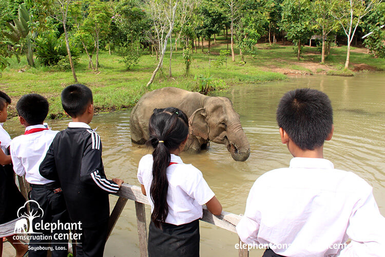 Elephant Conservation Center